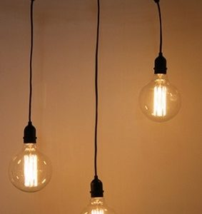 Festoon lights Edison Globes