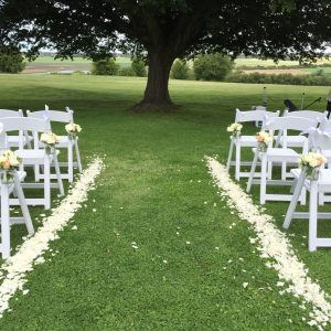 Rose Petals Scattered Down Aisle Event Avenue